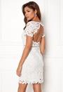 Felizia Lace Dress